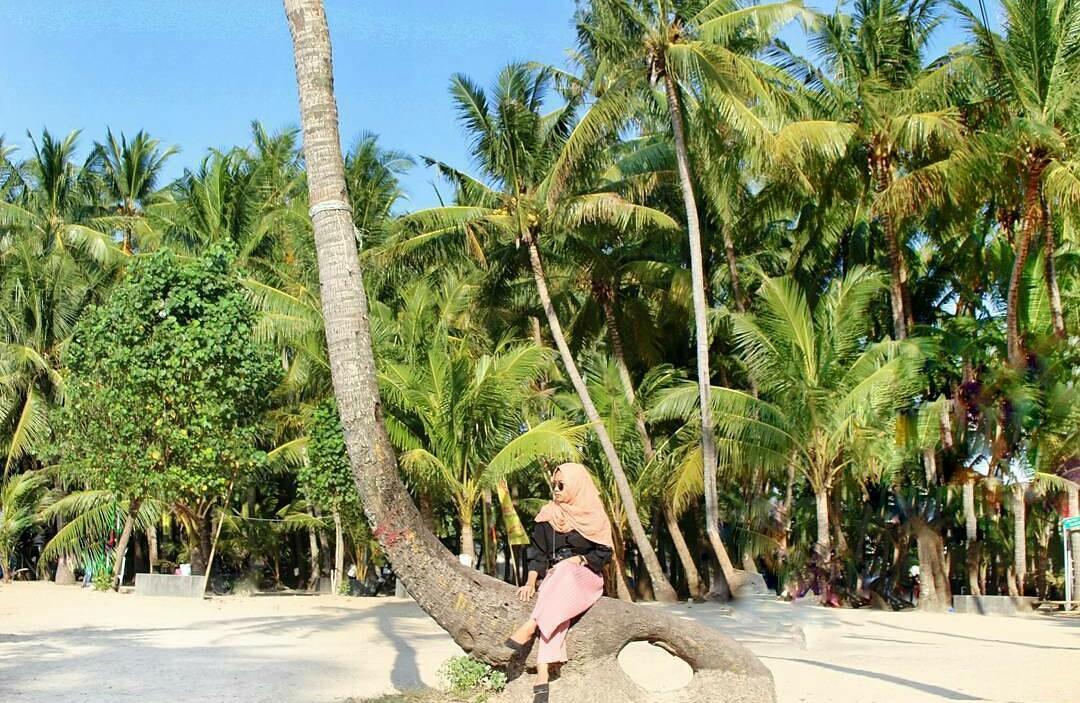 Tempat Wisata di Tuban