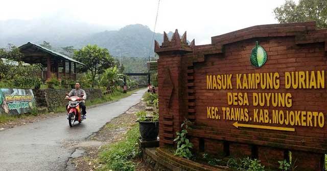 Kampung Durian Jombang