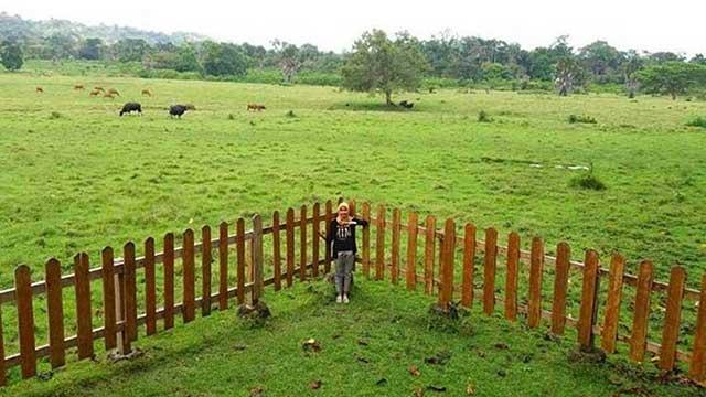 Padang Rumput Sadengan