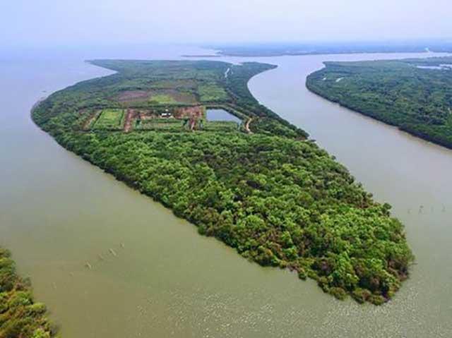 Pulau Sarinah