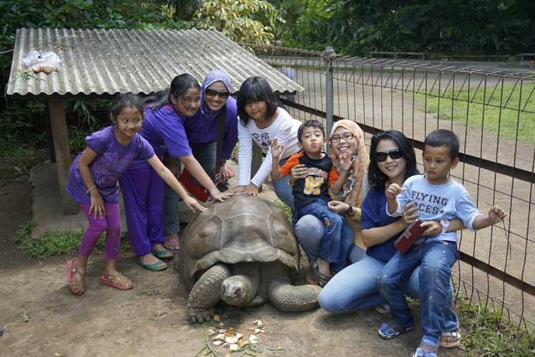 Wisata Edukasi Godong Ijo