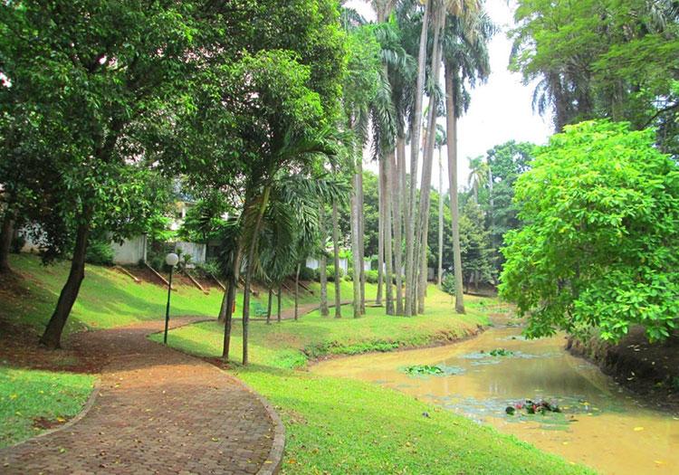 Taman Langsat